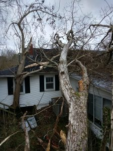 Emergency Storm Clean Up Before - Loretto, TN (Lawrence County, TN)