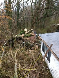Emergency Storm Clean Up After - Loretto, TN (Lawrence County, TN)